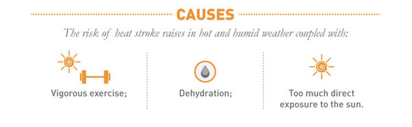 Causes of Heat Stroke